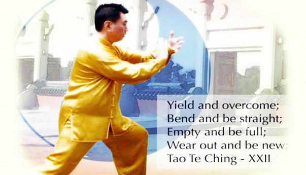 Tai Chi Chuan 太 極 拳